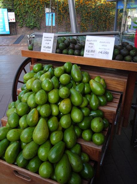 Авокадо в Латинской Америки