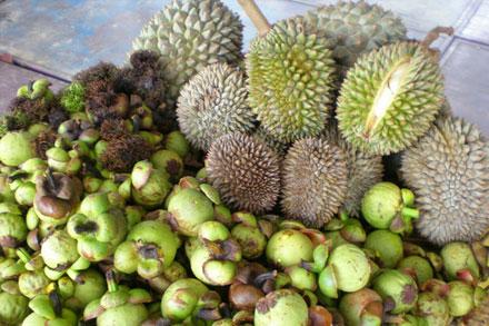 Рамбутаны, мангостины, дурианы