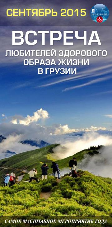 встреча в грузии