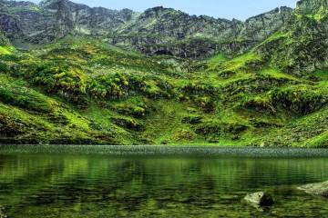 crystal_clear_lake_mzy__georgia